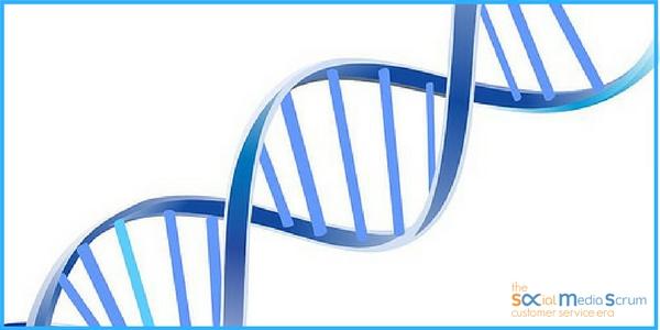 DNA di un Social Customer Service
